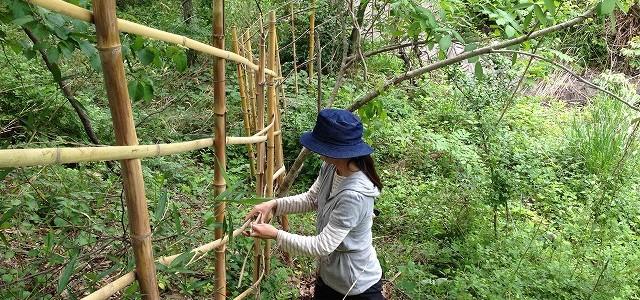 竹で柵も作っています♪